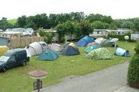 Campings Zeeland | Camping De Zeester